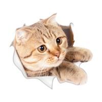 Стикер 3D Cat 18,5cm x 17,1cm
